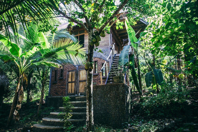 Jungle House - Homestay Ngoại Ô Hà Nội