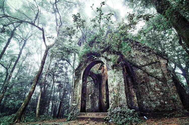 Vườn Quốc gia Ba Vì – Địa điểm du lịch cho học sinh, sinh viên
